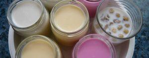 yogures1-640x250